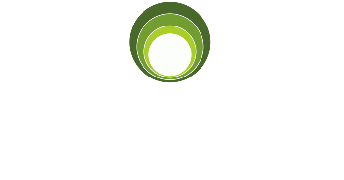 Legacy Home Inspection Chicago